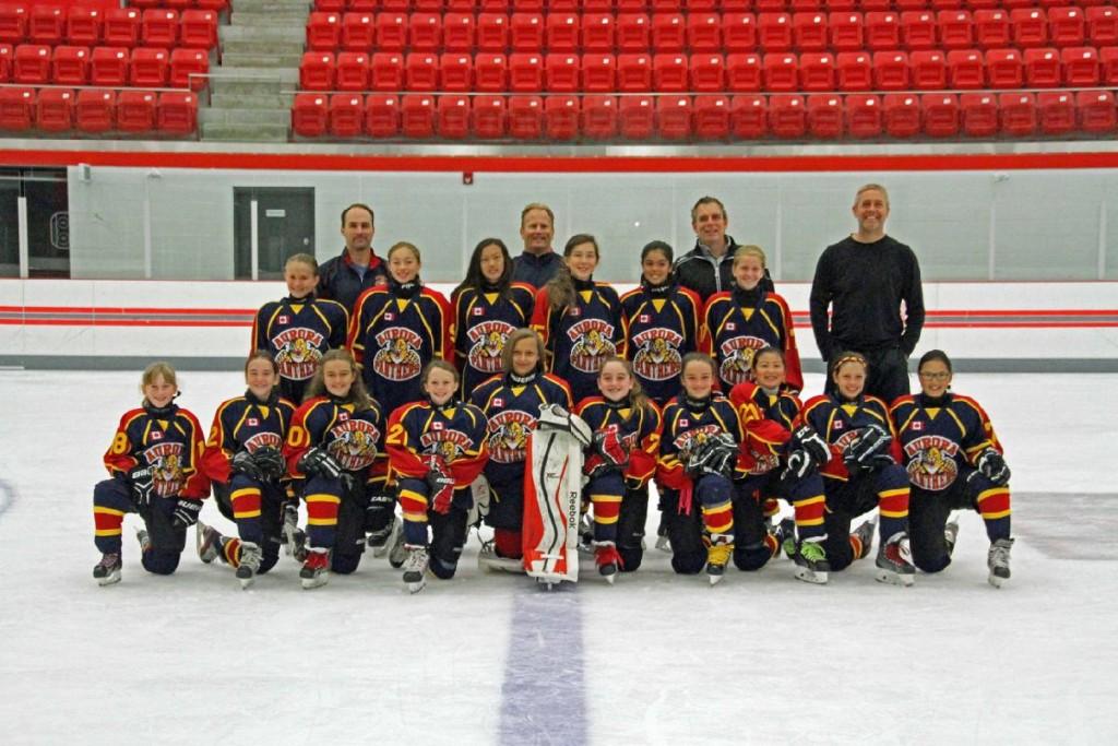 Sponsoring Girls Hockey